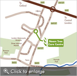 Neem Tree Map
